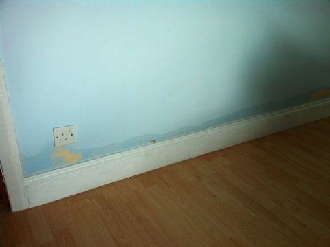 project for damp proofing in nottingham - image shows rising damp up the wall